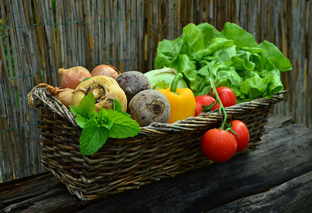 vegetables vegetable basket harvest gardenSm